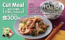 【1食300円】お試し5days!『カットミール』